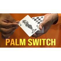 Magic Encarta Presents Palm Switch & Palm Control by Vivek Singhi