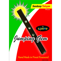 Jumping Gem Paddle by Sandeep Tulsyan