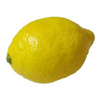 Super Real Latex Lemon