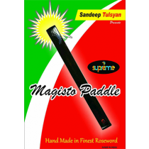 Magisto Paddle by Sandeep Tulsyan