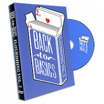 Back to Basics #2 - the Flourishing (DVD)