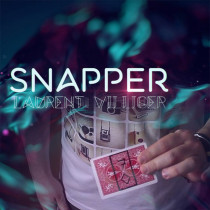 Snapper by Laurent Villiger
