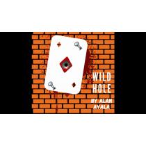 Wild Hole by Alan Ayala video DOWNLOAD