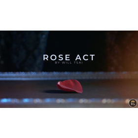 Visual Matrix AKA Rose Act Valorous Silver (Gimmick and Online Instructions) by Will Tsai and SansMinds