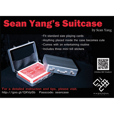 Suitcase by Sean Yang and Magic Soul