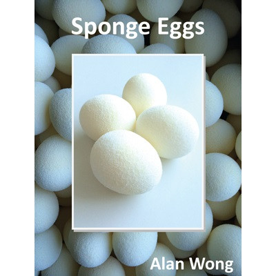 Sponge Eier von Alan Wong (4 Stück) - Schwammball