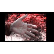 Metal Skin by Arnel Renegado video DOWNLOAD