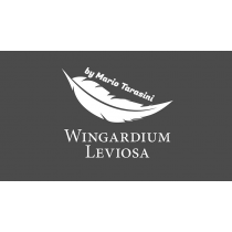 Wingardium Leviosa by Mario Tarasini video DOWNLOAD