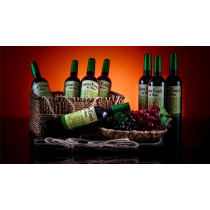 Green House Multiplying Wine Bottles by Tora Magic