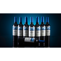 Ocean Multiplying Wine Bottles by Tora Magic