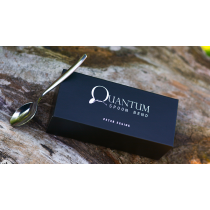 Quantum Spoon Bend (Gimmicks and Online Instructions) by Peter Eggink / Metal bending