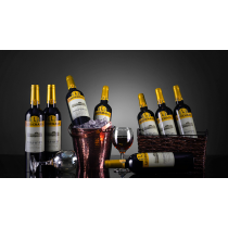 Sunshine Multiplying Wine Bottles by Tora Magic